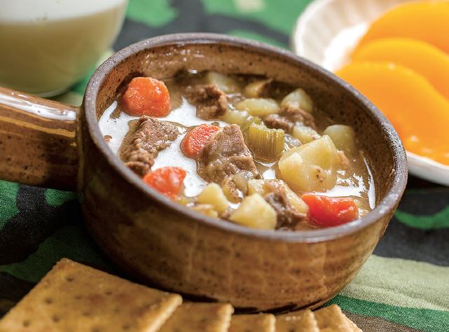 bowl of venison stew